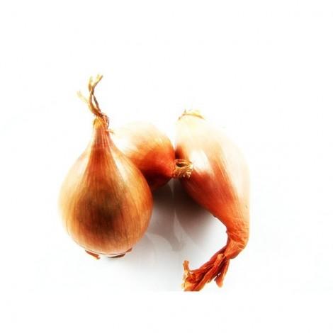 Echalote cuisse de poulet