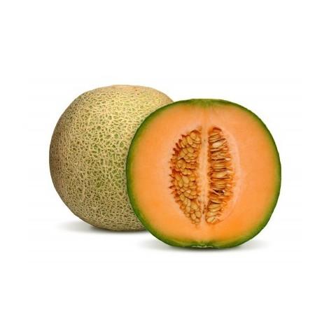 Melon brodé- Espagne
