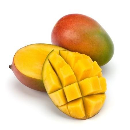 Mangue - Brésil