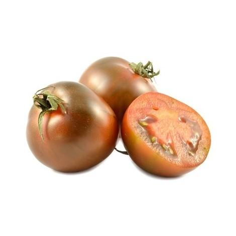 Tomate noire kumato - Espagne