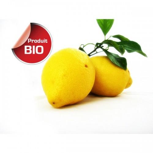 Citron Jaune BIO  - Espagne