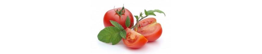 pour la production de concentré, de sauces, notamment le ketchup, de jus et de conserves.